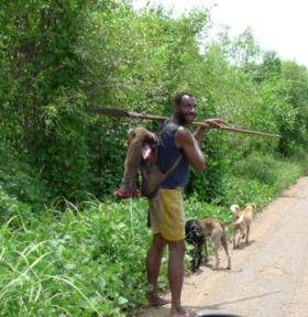 Eksploitasi Sumber Daya Alam Di Papua Selama 22 Tahun Dengan